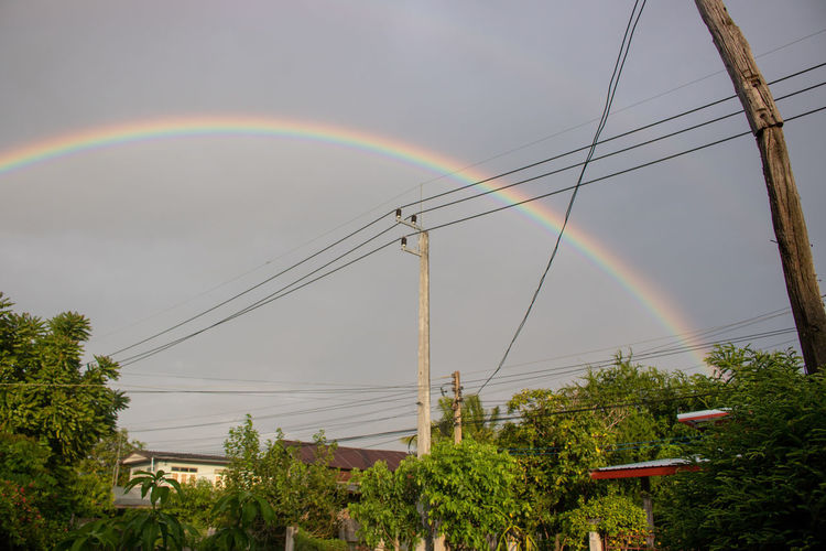Low angle view of rainbow over plants against sky