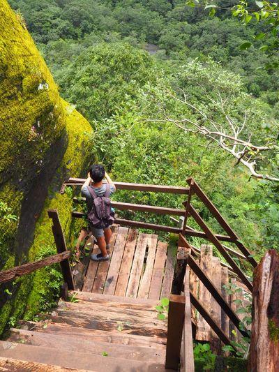People on footbridge against trees
