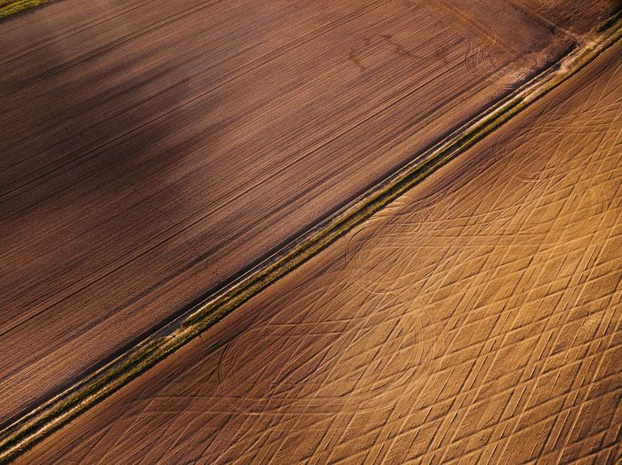 Pattern Backgrounds Textured  Striped No People Full Frame Nature Curve Sand Wood Grain Hardwood Day Close-up Outdoors