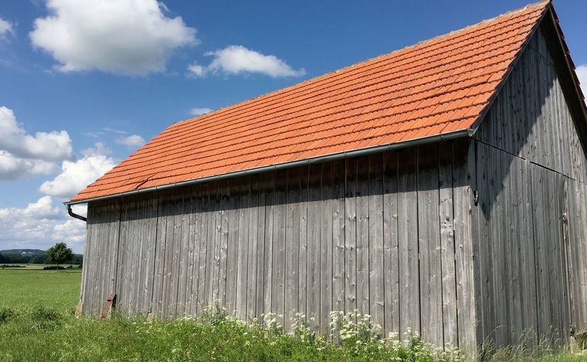 Plants growing by barn against blue sky