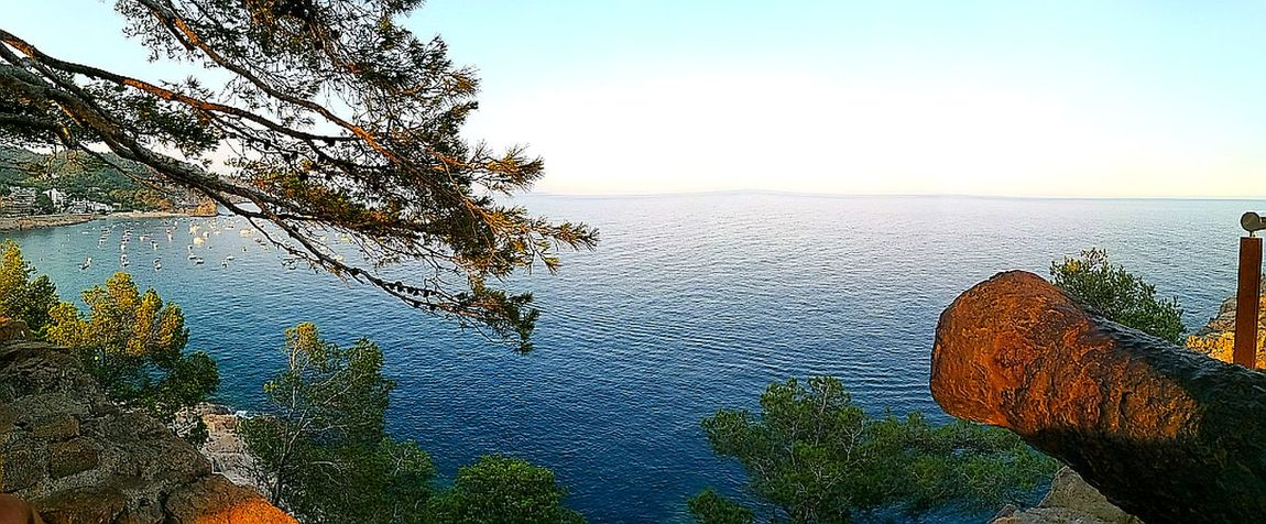 Tree Nature Reflection Beauty In Nature Water Plant Sky Tranquility Blue Summer ☀ Spain🇪🇸 Outdoors Cannon Tossa De Mar