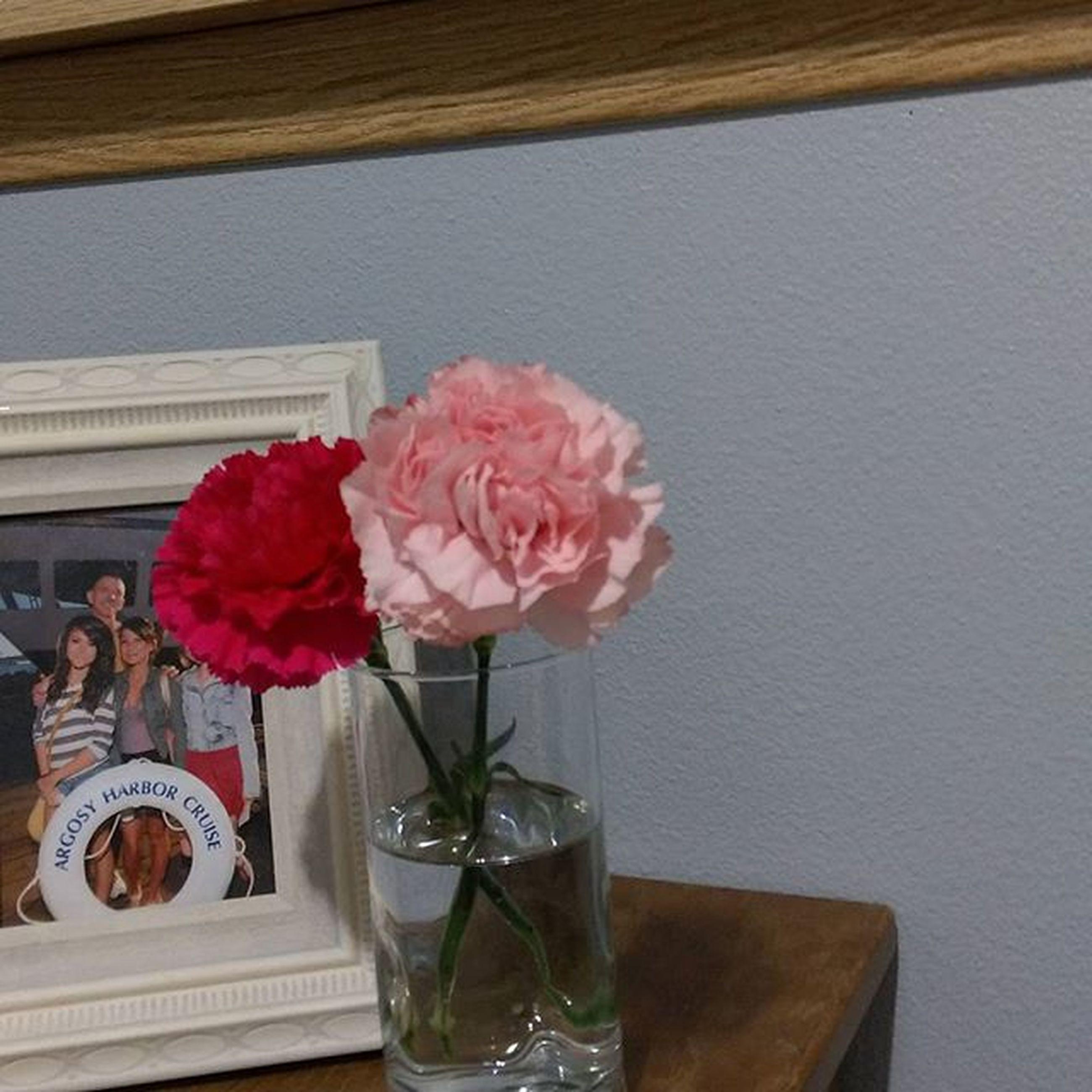 indoors, flower, table, freshness, vase, still life, glass - material, fragility, petal, drinking glass, food and drink, transparent, flower arrangement, close-up, rose - flower, drink, flower head, pink color, decoration, glass