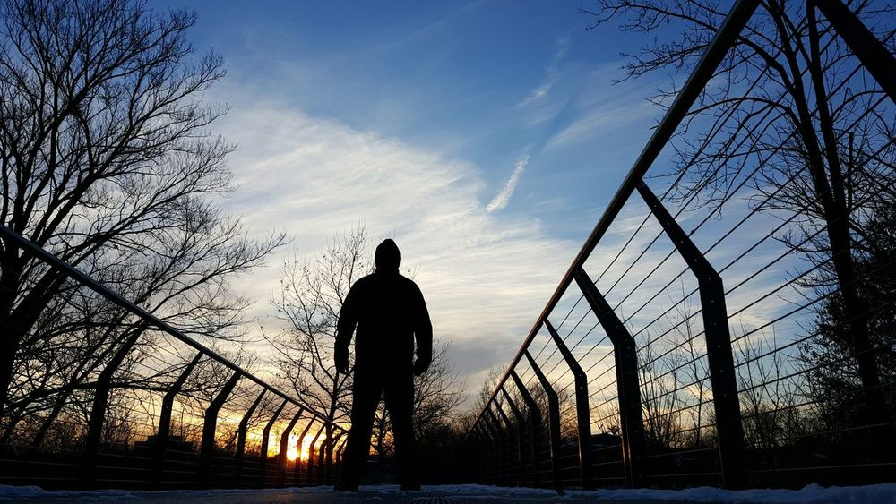 Silhouette Sunset Sky One Person Men Only Men One Man Only People Outdoors Nature Adults Only Adult Day Strength Bare Trees Winter Sunset Standing Steel Bridge Non Recognizable Person Urban Nature Low Angle View Converging Lines Steel Cables Silhouette Winter