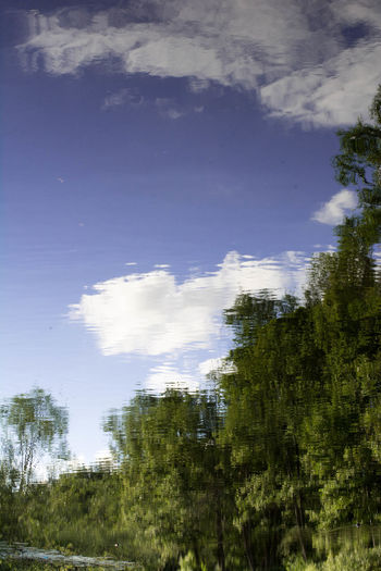 Abstract Beauty In Nature Blue Cloud Cloud - Sky Confusing Day No People Outdoors Reflection Sky Sweden Tree Upside Down Weather