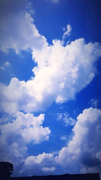 明日も、こんな空を見上げたい。 Clouds And Sky EyeEm Nature Lover Summer2014 Japan