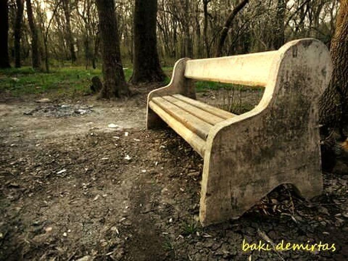 Urbanphotography Türkiye Urban Edirne Nature EyeEm Nature Lover Loneliness Open Edit