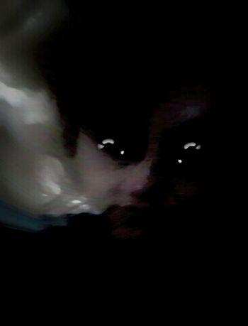 http://vimeo.com/m/13795801 Aphex Twin Window Licker Mental Distortion