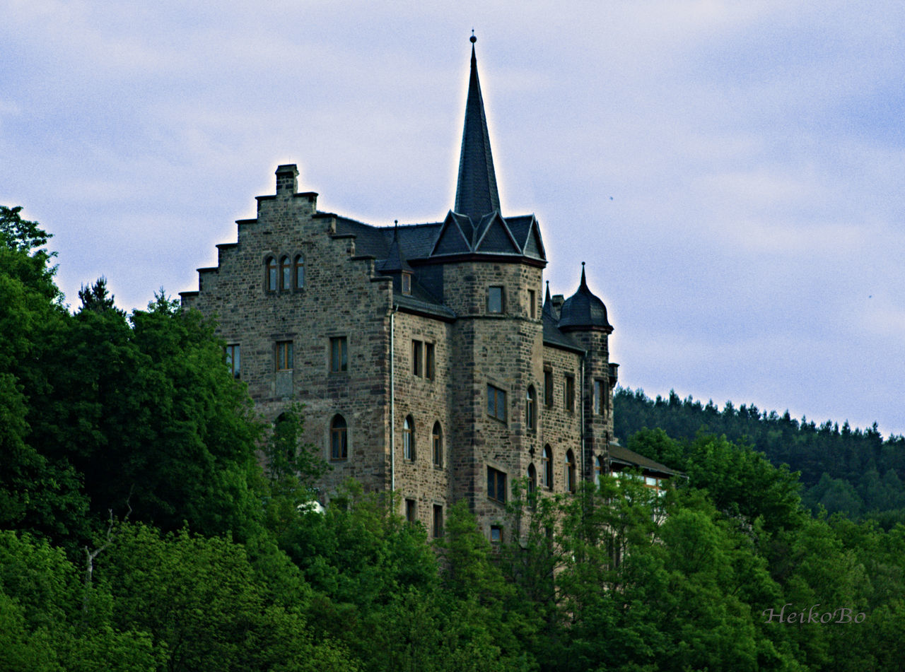 architecture, history, tree, sky, no people, castle, building exterior, low angle view, built structure, day, nature, outdoors