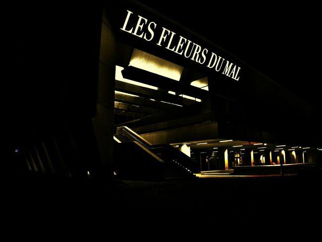 Light Installation Architecture Les Fleurs Du Mal