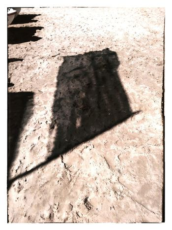 L'ombra del vento.....