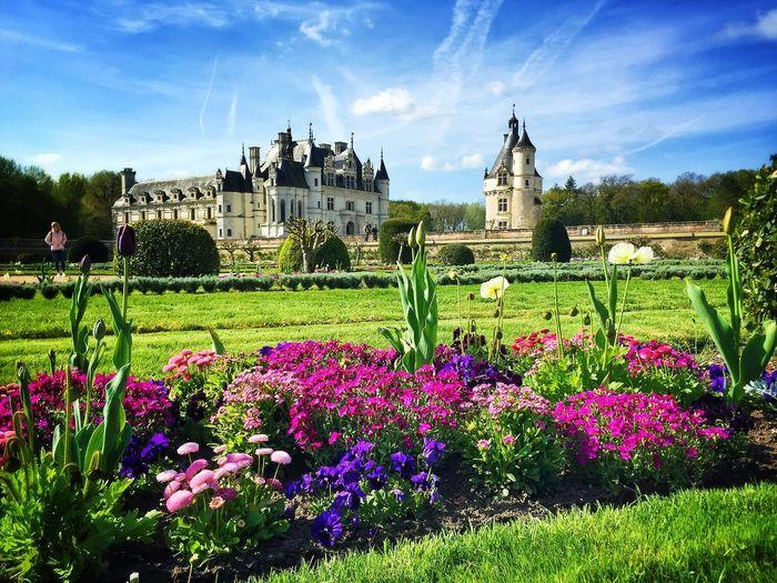 Château de Chenonceau, France 2017 Architecture Castle France Gothic Loire Valley Renaissance Chenonceaux Château French Garden EyeEmNewHere