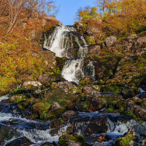 Water Rock Solid Rock - Object Beauty In Nature Flowing Water Scenics - Nature Motion Nature Waterfall Land Forest Tree No People Plant Flowing Long Exposure Autumn Day Stream - Flowing Water Outdoors Change Falling Water Running Water