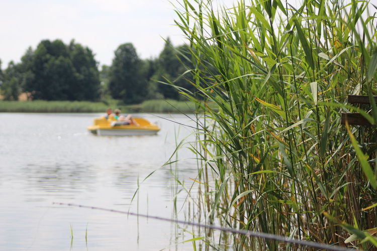 Beauty In Nature Day Fishing Fishing Time Grass Grass Lake Leafs Nature Nautical Vessel One Person Outdoors Pedalo People Plant Real People Sky Tree Water Water Bike Yellow Yellow Pedalo Yellow Water Taxi