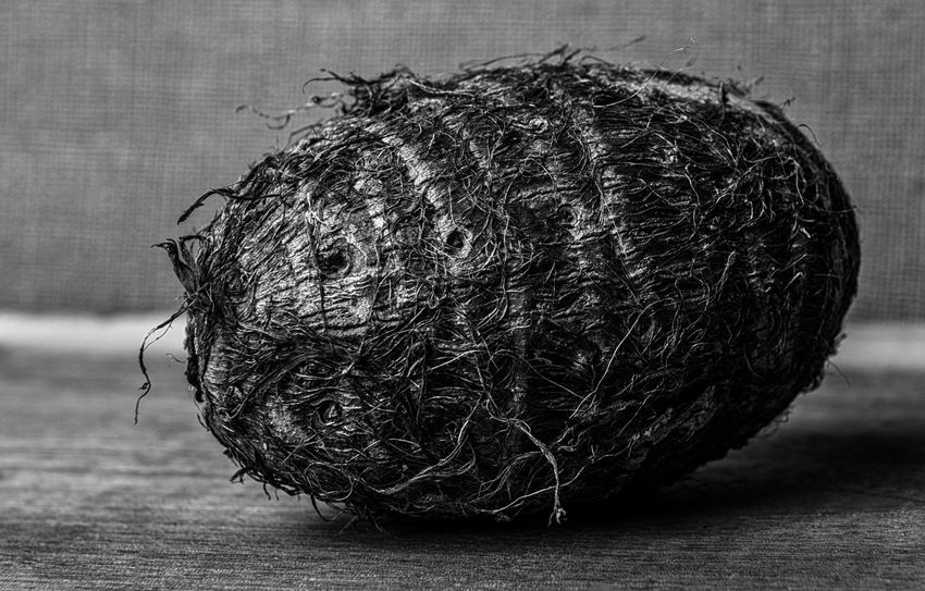 Close-up Day Detail Focus On Foreground Natural Pattern Nature No People Root Vegetable Selective Focus Still Life Taro Root