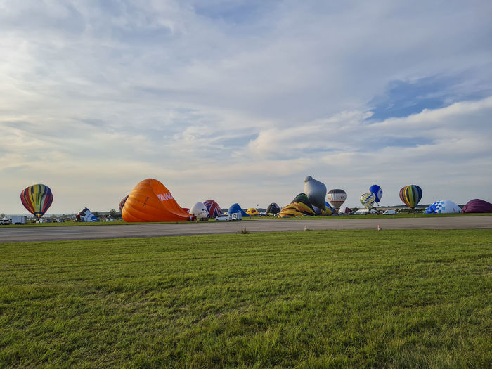 Multi colored balloons on field against sky
