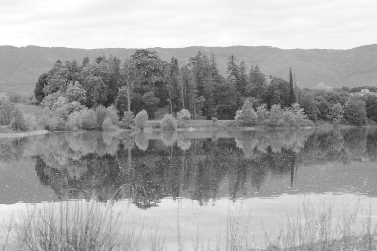 Acqua Riflessi Riflessi Sull'acqua Lago Di Bilancino Bilancino Italy