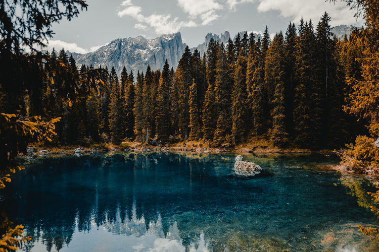 Beauty In Nature Cloud - Sky Coniferous Tree Flowing Water Forest Growth Idyllic Lake Land Mountain Nature No People Non-urban Scene Outdoors Pine Tree Plant Reflection Scenics - Nature Sky Tranquil Scene Tranquility Tree Water