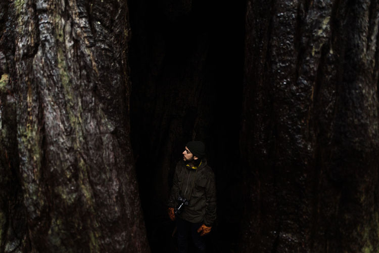 Young man standing by tree trunk in forest