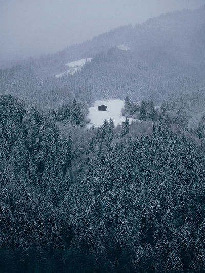 Solitude Austria Tree Beauty In Nature Tranquility Scenics - Nature Fog Tranquil Scene Nature Forest No People Day High Angle View Sky Non-urban Scene Land Environment Cold Temperature Outdoors Solitude Snow Snowcapped Mountain Snow Covered Snow Covered Trees