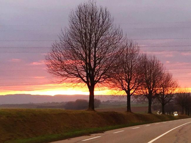 Morning Morningsun Morning Sky Morning Light Morning Sun