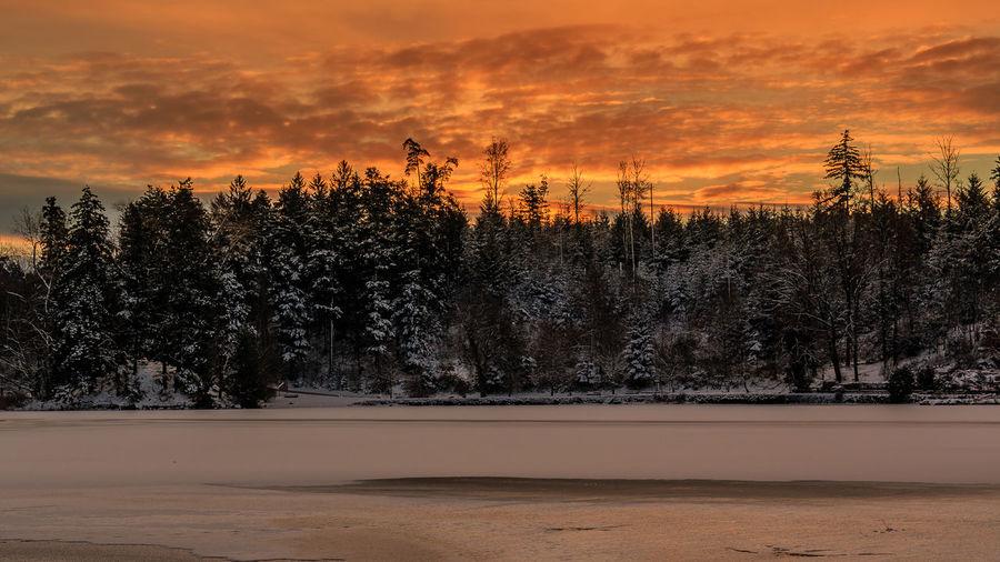 Ein Wintermorgen am Bergsee, Januar 2017. Beauty In Nature Cloud - Sky Cold Temperature Frozen Lake Glowing Landscape Nature No People Orange Color Outdoors Sky Snow Sunrise Tree Winter