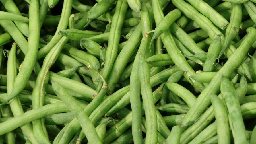 Green Beans Green Color Beans Phaseolus Vulgaris String Beans Field Bean Snap Beans Grüne Bohnen