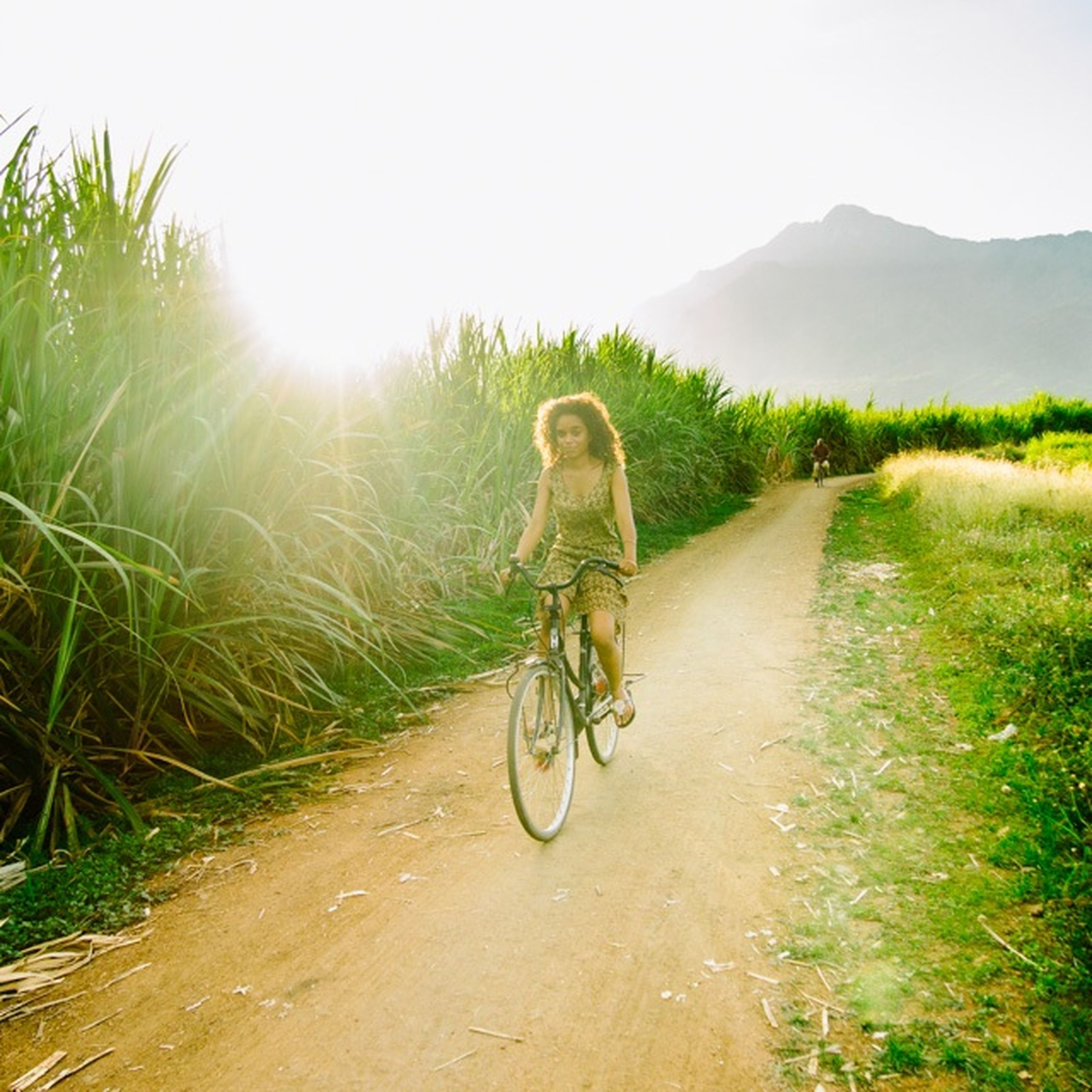 bicycle, full length, transportation, riding, lifestyles, land vehicle, leisure activity, mode of transport, cycling, road, dirt road, men, rear view, the way forward, sunlight, casual clothing, grass, clear sky