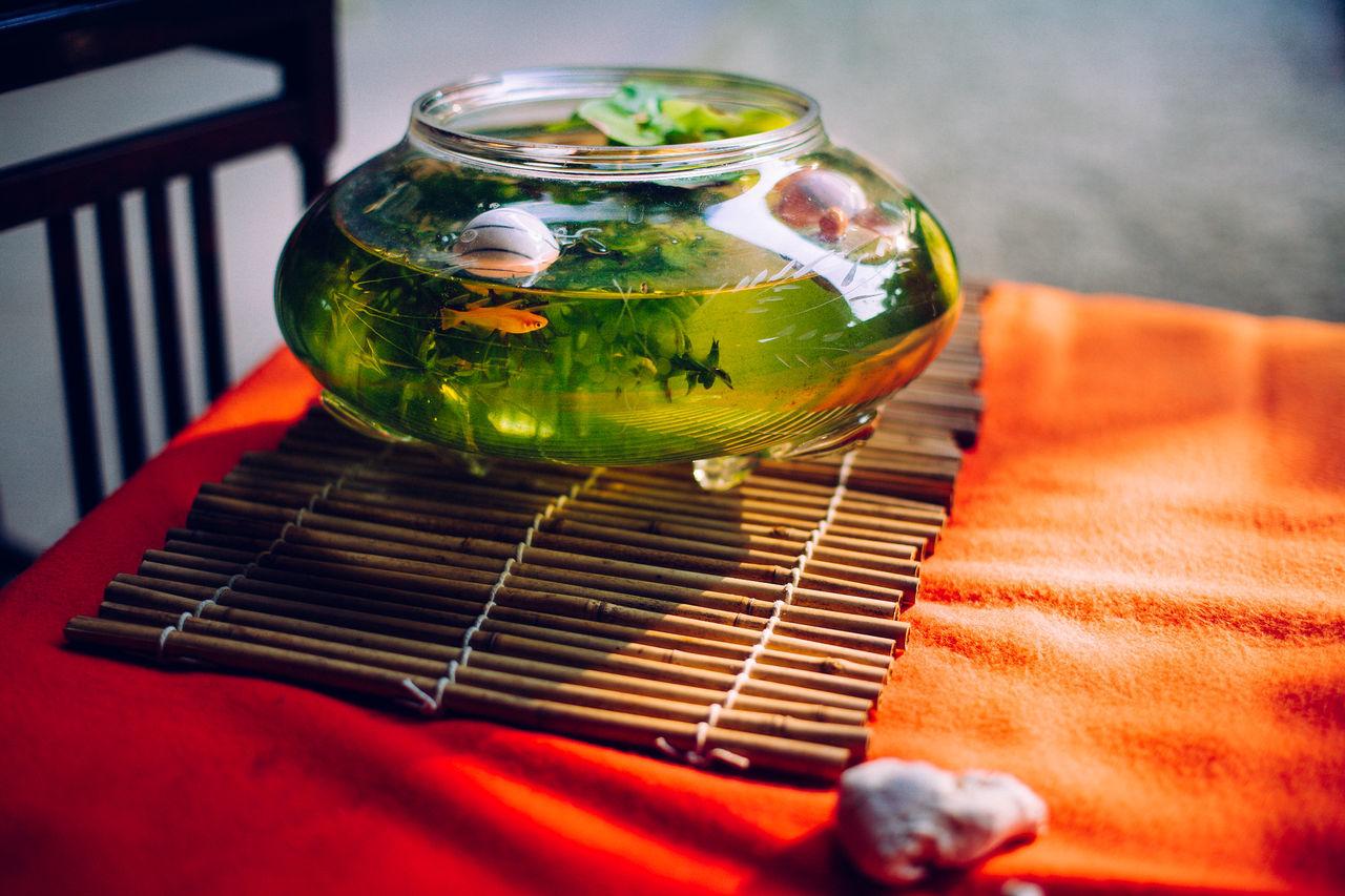 High angle view of fish bowl on table
