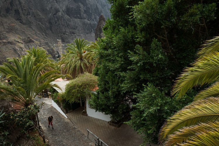 Pirates' Hideout Green Holidays Linas Was Here Nature Tourist Explore Jungle Mountains Palm Trees Real People Tenerife Vacation Village
