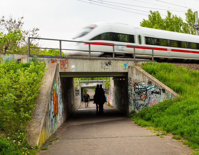 Architecture Bridge - Man Made Structure Built Structure Day Horseriding Horses I Intercity Express  Intercityexpress Leisure Activity Mammal Nature Outdoors People Real People Rear View Riding Road Sky The Way Forward Transportation Tree Two People Walking Women