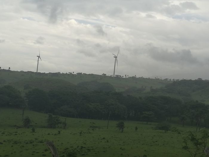 Tree Wind Power Mountain Wind Turbine Rural Scene Fog Agriculture Social Issues Field Forest