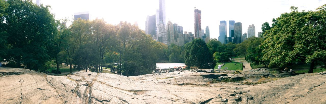 Central Park Tree Tranquility Tranquil Scene Rock - Object Scenics Nature Sky Growth Outdoors Green Color Beauty In Nature Solitude Remote Non-urban Scene No People