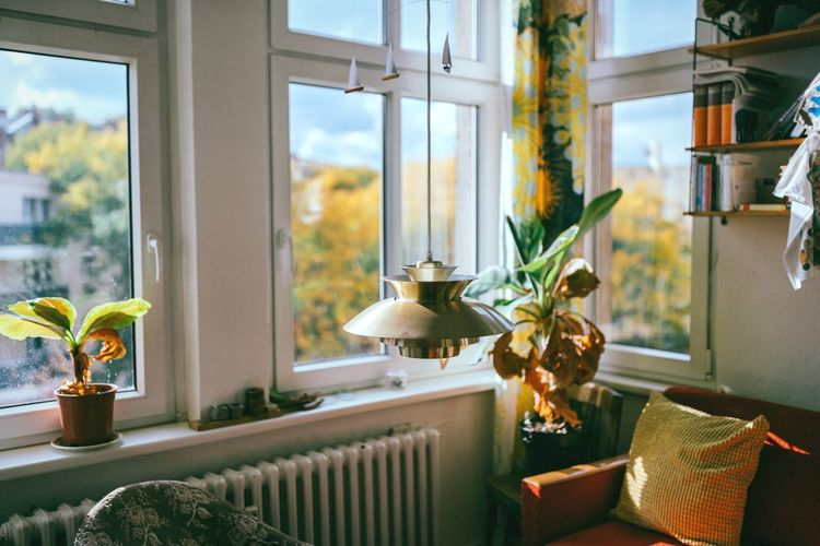 Autumn invasion 🍁🍂 Window Indoors  Home Interior No People Table Plant Flower Home Showcase Interior Nature Architecture Close-up Interior Design House Houses And Windows Berlin House Housing Living Room Autumn Colors Autumn Minimalism Space Room Decor View From The Window... Window View Neukölln