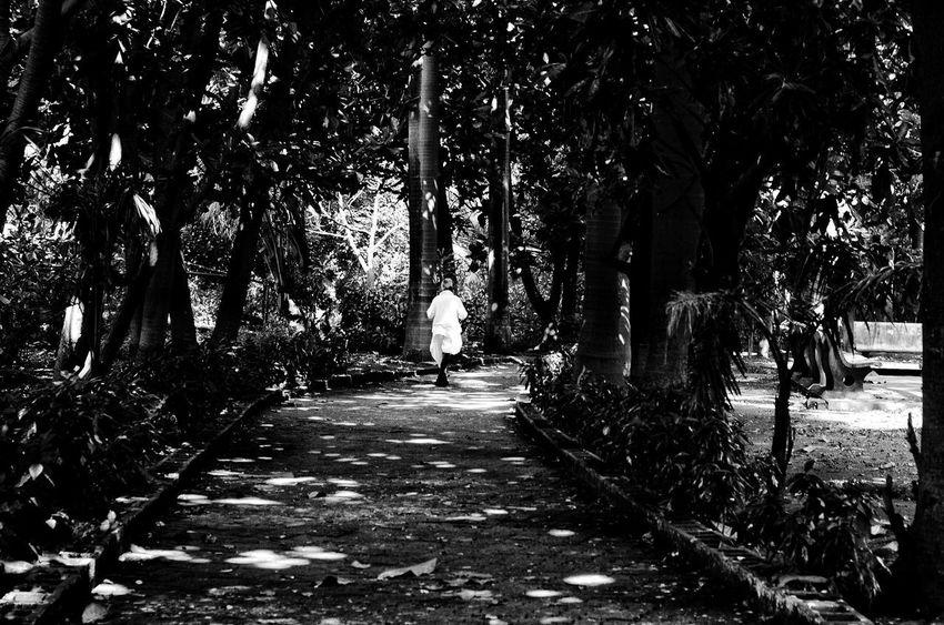 Light Shadows... HighKeyMuch Blackandwhite Mumbaistreets The Street Photographer - 2017 EyeEm Awards Streetphotography Magnumphotos Indiaphotosociety Creativeimagemagazine
