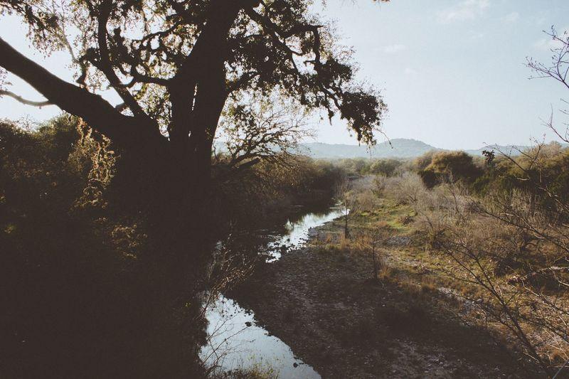 Nature Nature