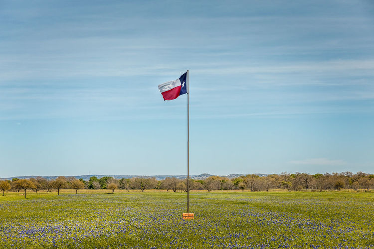 Texas Green Spring Flag Bluebonnet Nature Blue Hills Wildflowers Field Country Meadow Hill Fence Bonnets USA Sky White Lifestyle Season  Outdoor Grass Rural Purple America Flowers Warm Countryside Living Trees Blooming Violet Pasture Beautiful American Plant Land Patriotism Environment Beauty In Nature Landscape Tranquility No People Pole Tranquil Scene Green Color Scenics - Nature Growth Wind Outdoors