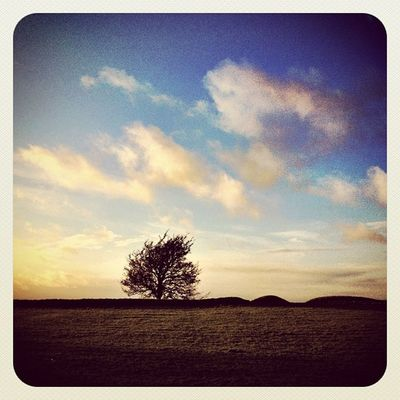 #hill_of_tara #ireland #jj_forum #jj #beautiful_ireland #earlybirdlove #photooftheday #sunset #tree Clouds Sunset Tree Ireland Photooftheday Jj  Earlybirdlove Jj_forum Decdaily Hill_of_tara Beautiful_ireland