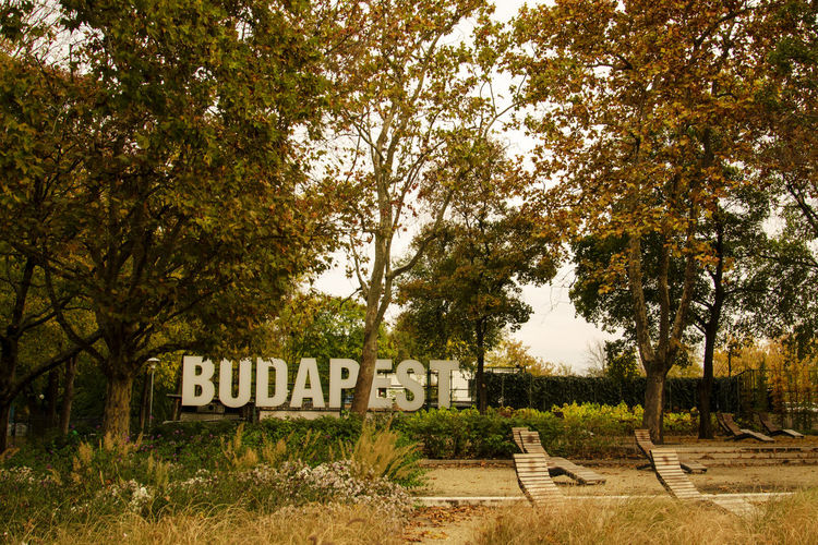 Amazing Landscapes of Budapest, Views of Hungary Tree Plant Text Western Script Nature No People Growth Communication Day Sign Information Land Grass Capital Letter Field Information Sign Tranquility Trunk Tree Trunk Beauty In Nature Outdoors