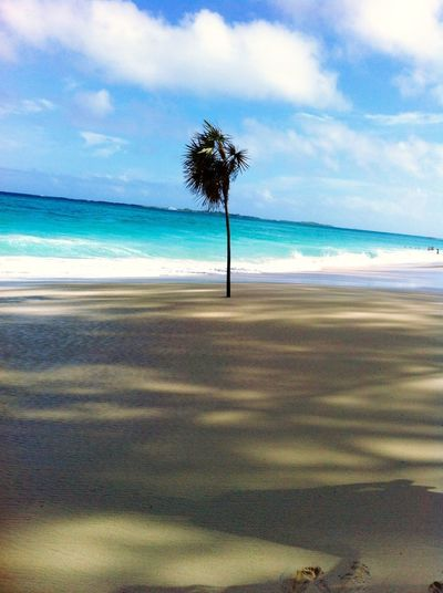 Eye4photography Bahamas Pic From My Cruise Beach