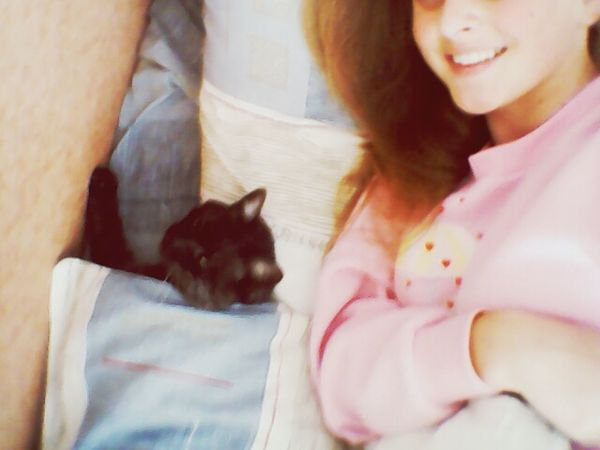 Cat♡ Night Pets My Cat And Me