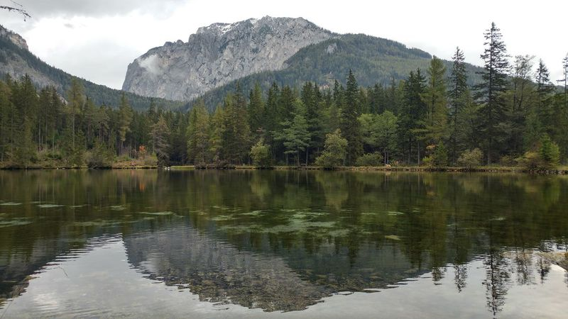 Tree water Reflection landscape mountain no people Nature scenics outdoors beauty in Nature . in Tree Water Reflection Landscape Mountain No People Nature Scenics Outdoors Beauty In Nature Tragöss Austria My Year My View The Great Outdoors - 2017 EyeEm Awards Colour Your Horizn Go Higher