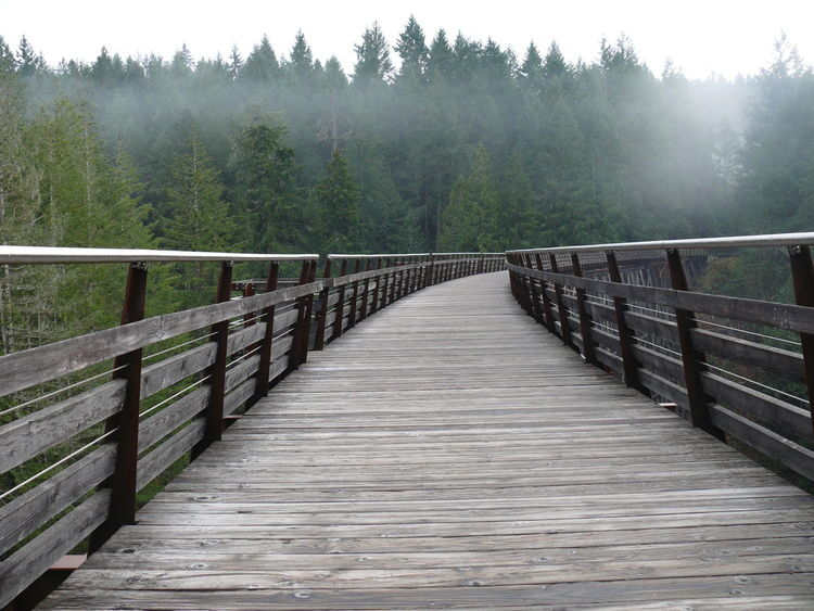 Trestle Trestle Bridge Wooden Bridge Wooden Structure Wooden Train Track Kinsel Bc BC Canada Nature Photography Bridge In The Nature Bridge Photography Bridge Over Water Bridge Over River Traveling Home For The Holidays Let's Go. Together.