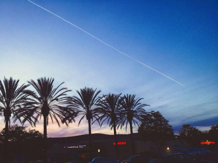 [ Making Memories • San Diego Skyline ] Skyporn Minimalism Learn & Shoot: Simplicity Getting Inspired Vscocam Skyline Wanderlust California San Diego IPhoneography
