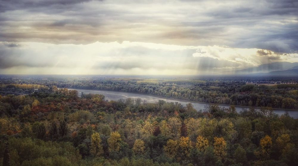 Herbstwald Rheinblick Elsass Vogesen Sky Nature Cloud - Sky Scenics Tree Beauty In Nature Outdoors Tranquility No People Idyllic Growth Landscape Tranquil Scene Mountain Day Cityscape Landscapes Landscape Photography Nature On Your Doorstep Autumn Colors Ladyphotographerofthemonth