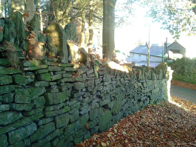 Pathway Autumnbeauty Pathways Drystonewalls Autumnbeauty Autumn Leaves Autumn Tranquility Leaves Nature Beauty In Nature Sunset Sunlight Outdoors Scenics Tranquil Scene