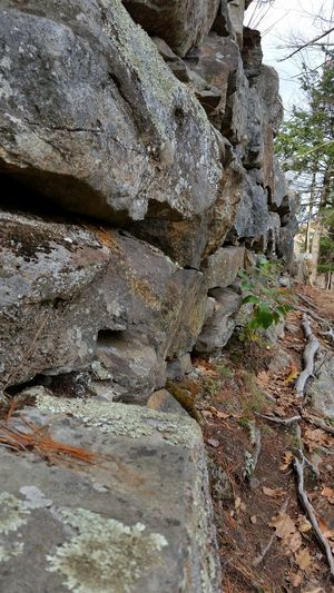 Rock - Object Outdoors No People Day Textured  Close-up Landscape Low Angle View History ObjectPhotography Granite Wall Stone Wall Roots Lichen Narrow Path Precarious Decaying Beauty New England  New Hampshire, USA Architecture_collection Manmade