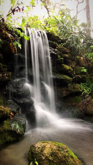 Perfection Waterfall Motion Scenics Water Long Exposure Beauty In Nature Nature Rock - Object No People Tree Plant Outdoors Travel Destinations Power In Nature Day Sky