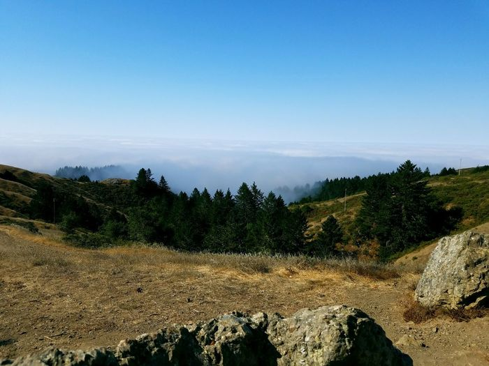 Scenic view of mountains against sky at muir woods national monument