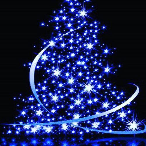Joyeuxnoel MerryChristmas Sapinnoel