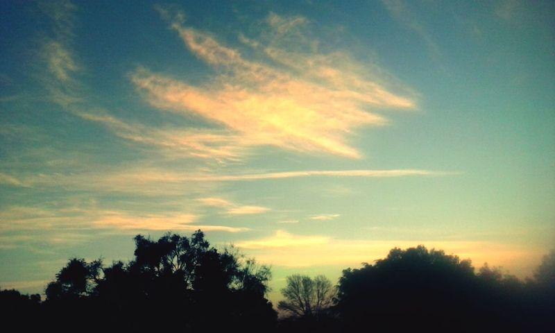 Un nuevo dia Un Nuevo Dia Enjoying Life Check This Out Hello World Nature Photography Amor ♥ Amanecer En Mi Ciudad Raindrops Sky And City Colores De La Naturaleza Blue Sky Teextraño Colores